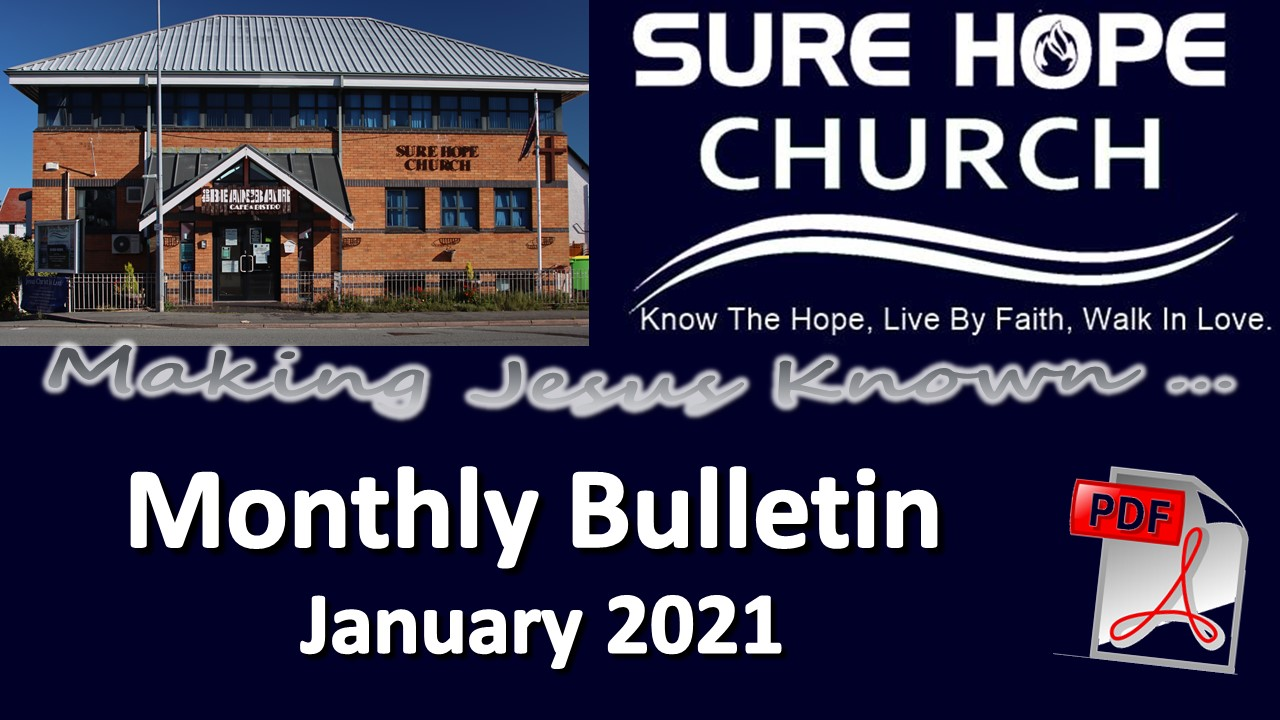 Monthly Bulletin - 2021-01